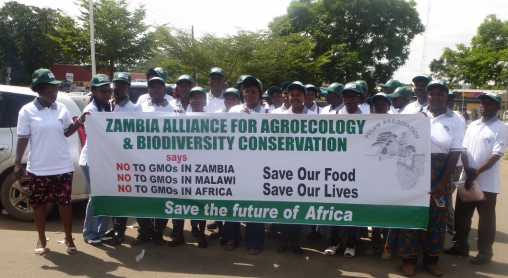 Welcome to the new ZAAB website! | Zambia Alliance for